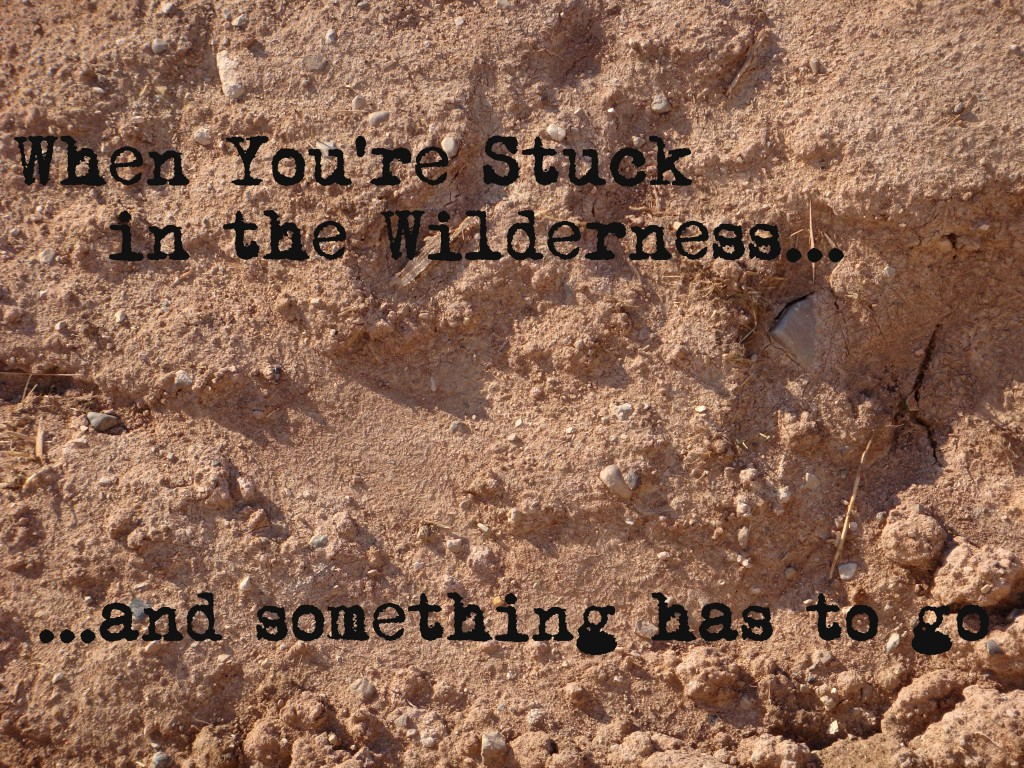 textures-dirt-and-mud-2 (w text)